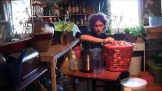 Wino jabłkowe 20l (ok 15%): - 20kg jabłek (ok 10l soku) - 5kg cukru...