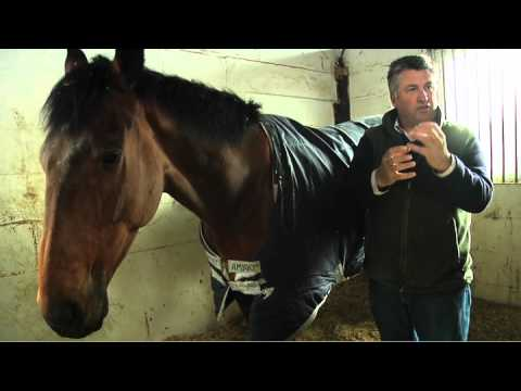 Paul Nicholls: Aintree Festival Preview 2012 - Part 2