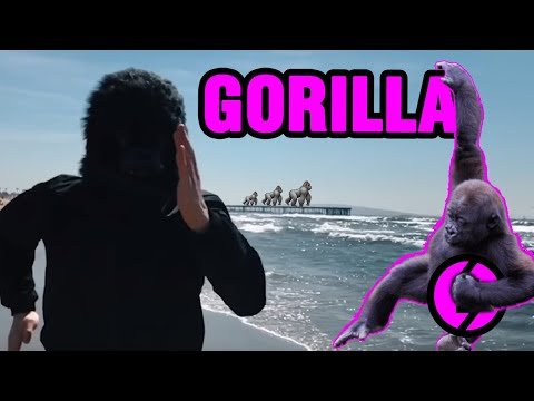 ZE GRAN ZEFT - GORILLA - OFFICIAL VIDEO Mp3