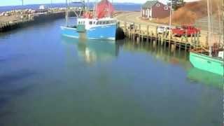 CTV.BY: Самый высокий прилив в мире