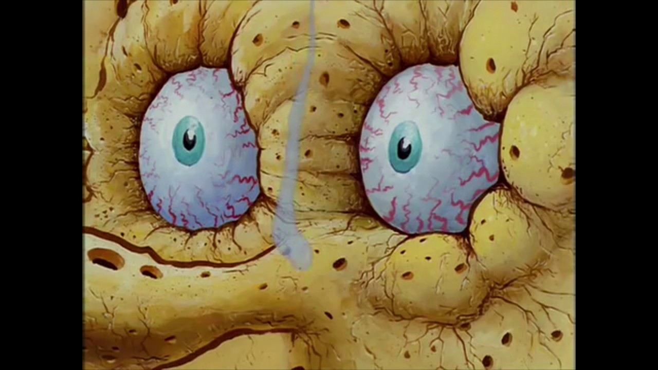 Resultado de imagen para sponge bob dry