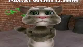 Harami Billi punjabi PagalWorld com
