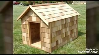 Dog house ideas for large dogs|Outside dog house ideas|Warm dog house ideas|Tulip Fusion