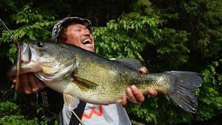 MEGABASS MOVIE #205 琵琶湖ガイド杉村和哉が野池で50アップ連発!! thumbnail