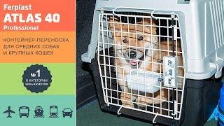 Переноска для средних собак и крупных кошек · Ferplast ATLAS 40 Professional