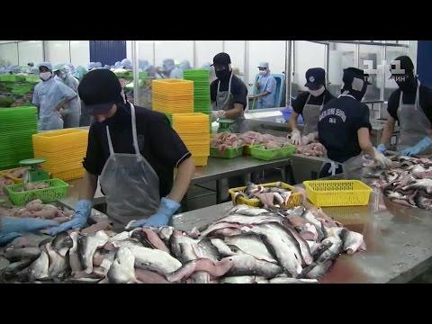 Рыбалка в мае: Какую рыбу ловить в мае. Таблица рыбака