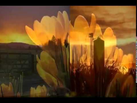 SUNRISE...SUNSET.............ROBERT GOULET