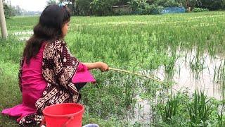 Beautiful Village Girl Hook Fishing   Fishing With Hook   Traditional Hook Fishing (Part-167)