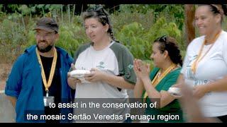 Drones no Céu do Cerrado - Como drones podem mudar a conservação e a restauração de Áreas Protegidas