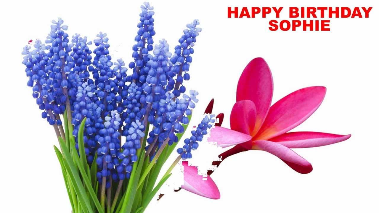 Sophie Flowers Hy Birthday