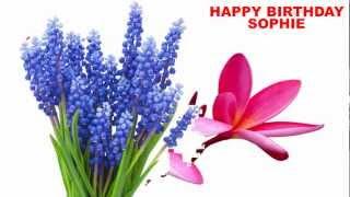 Sophie - flowers - Happy Birthday