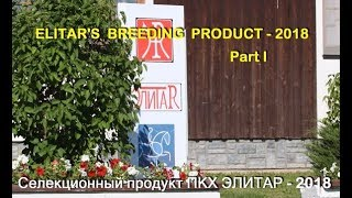 ELITAR'S BREEDING PRODUCT-2018.  Part I