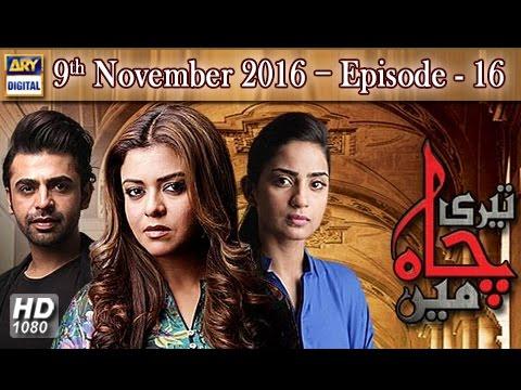 Teri Chah Mein Ep 16 - 9th November 2016  - ARY Digital Drama