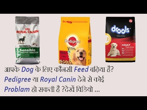 Best Feed For Your Dog In Hindi By AAA{All About Animal}