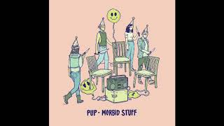 PUP - See You At Your Funeral