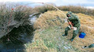 Караси по 1 кг ЁКЛМН Как наловить много рыбы Рыбалка на паук зимой Рыбалка 2020 Рыбалка