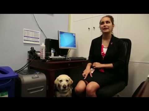 Texas Tech Student Takes on D.C. with Guide Dog