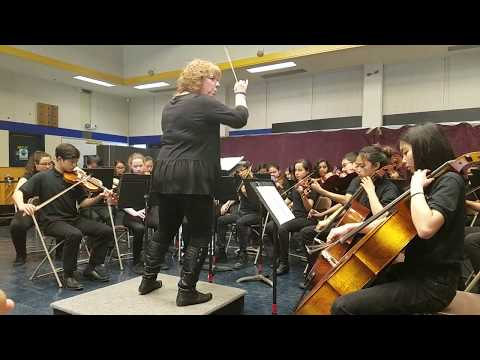 Parkside Strings Orchestra's First Place Performance at Music In the Parks 2018