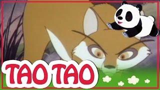 Tao Tao - 30 - החברים הכי טובים בעולם