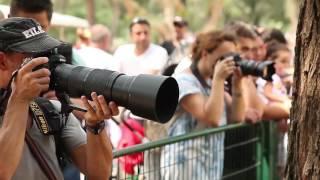 Урок фотографии в Израиле с Борисом Кульмагамбетовым. Сафари. Рамат-ган.(Фотосъемка от профессионала. Закулисье удивительного мира фотоискусства. Уроки, съемки - жизнь с фотоаппар..., 2017-01-30T20:52:35.000Z)