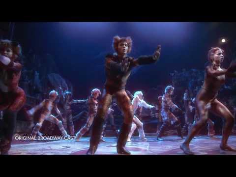 CATS Montage - Broadway in Cincinnati