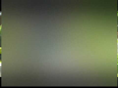 Beribu Lidah  Patutlah, By,Pdt.H.P,Simanjuntak,S.Th