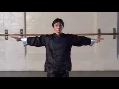 Preview Austin Goh Wing Chun For Beginners Youtube