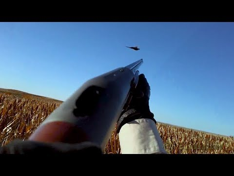 Sporting Clays And Pheasant Hunting: GunVenture|S2 E1 P1