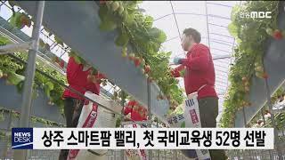 상주 스마트팜 밸리, 첫 국비교육생 52명 선발 / 안…