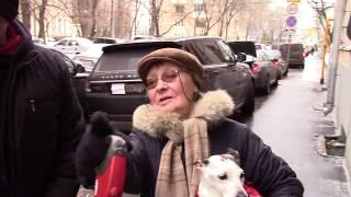 СтопХам-Быдловатое такси