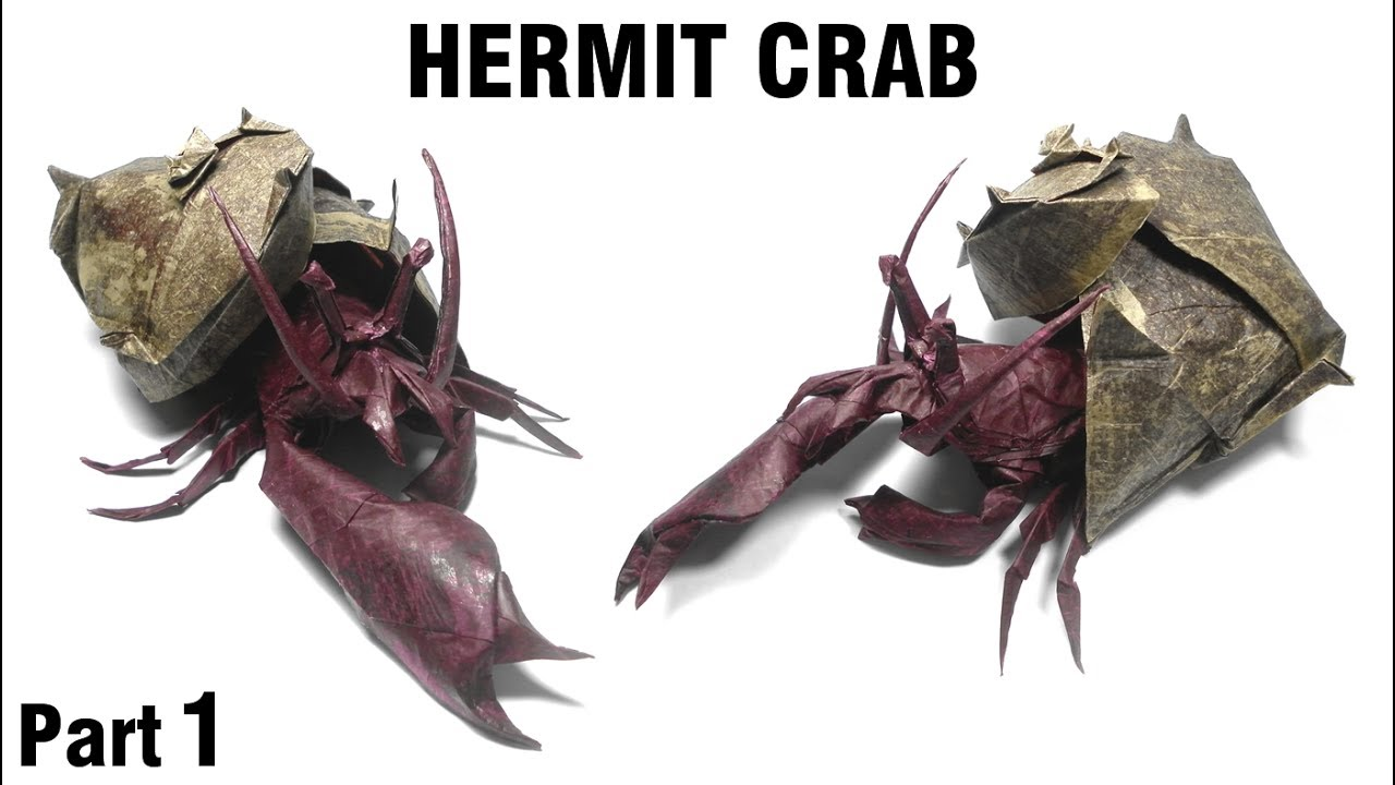 how to get a hermit crab to come out