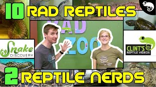 snake-discovery-and-clint-s-reptiles-10-raddest-reptiles-at-the-rad-zoo