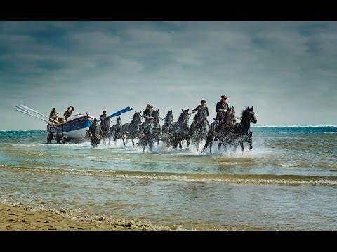 LLOYDS BANK Black Horse