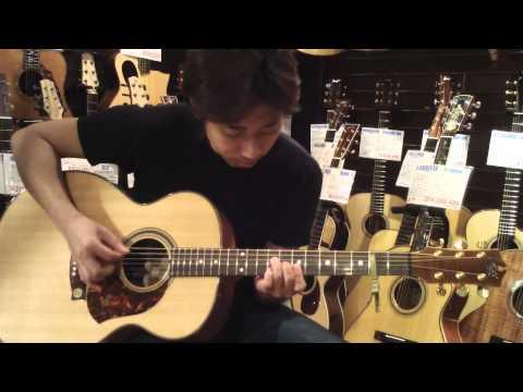 Dolphin Guitars - MATON