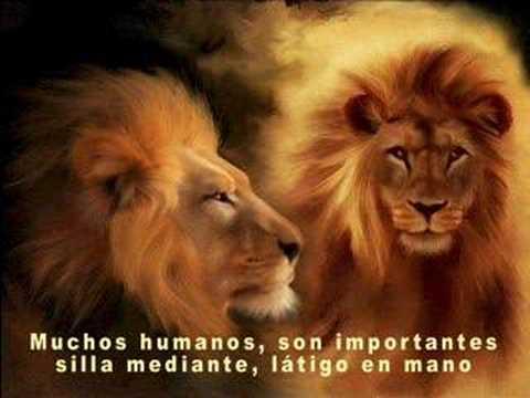 Carta de un León a otro - Juan Carlos Baglietto