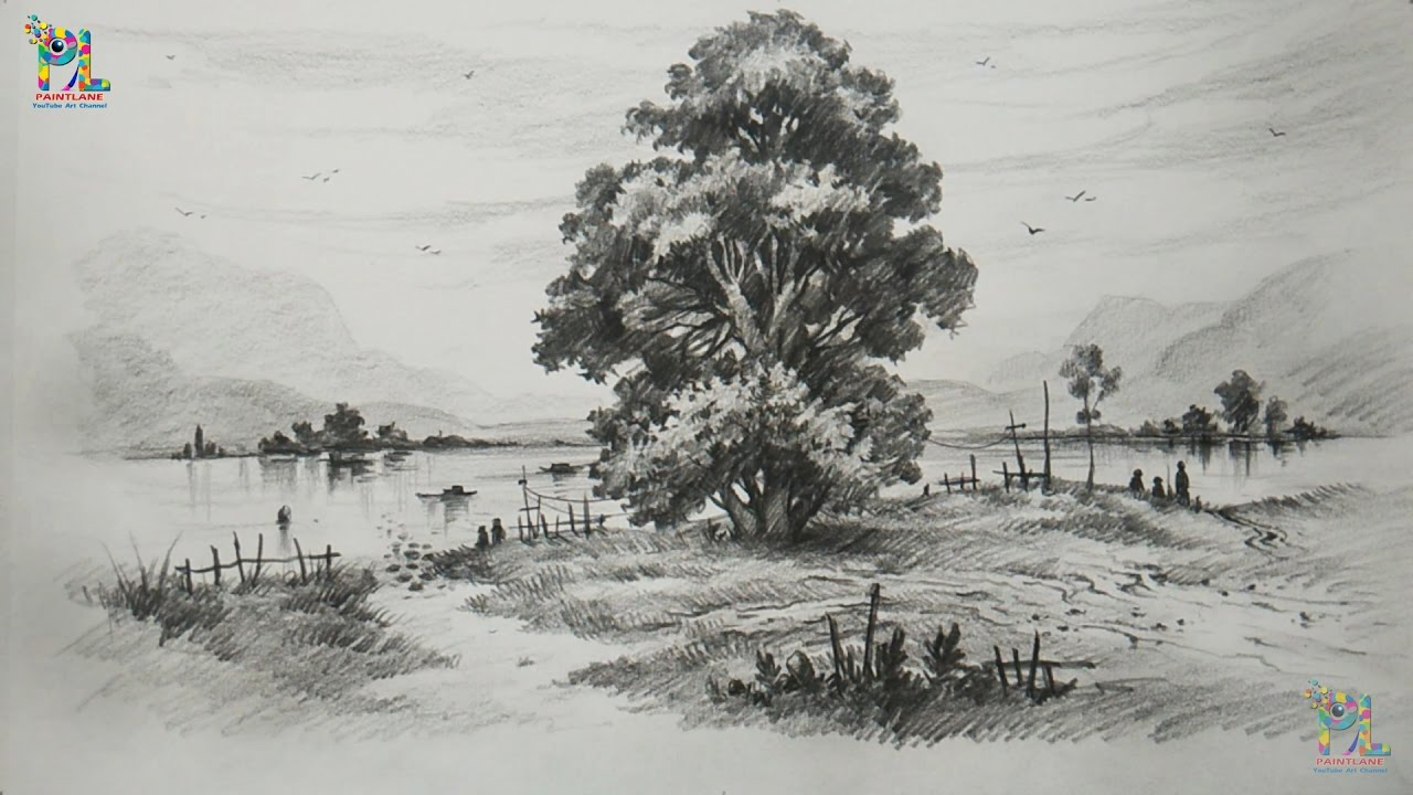 How To Draw And Shade A Tree In Beautiful Landscape With PENCIL
