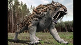Giant Terrifying Animals Lived Before Modern Man | Extinct Animals