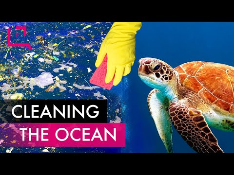 Can We Clean the Ocean?
