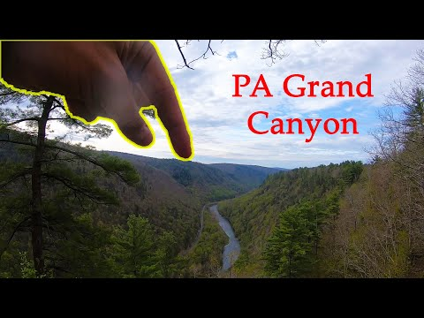 Northern Exploration Pt. 3 - Fly Fishing PA Grand Canyon