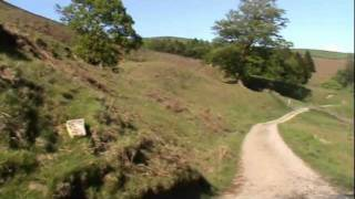 Yorkshire Dales Country Walk - Ashfold Side Beck to Pateley Bridge (Part 2)