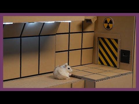 [ENG Sub] Hamster Shelter