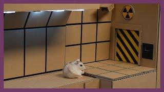햄스터 전용 지하벙커 (Hamster Shelter)