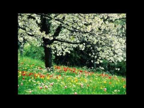 Fuggi, Fuggi, Fuggi da Questo Cielo Lyrics Giuseppino 16th century ode spring Smart Symphonies