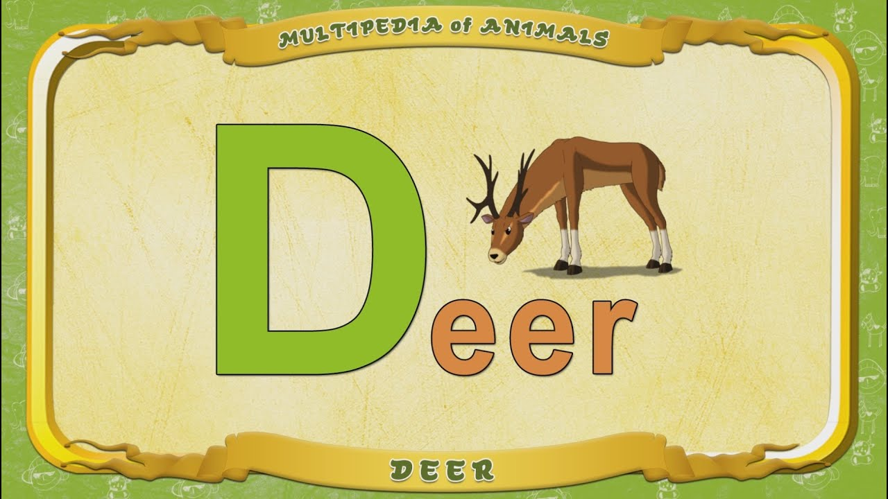 5 letter words ending in ze multipedia of animals letter d deer 16340