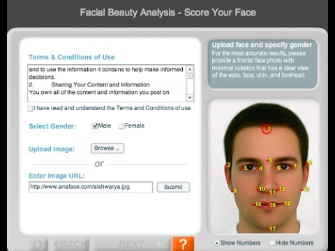 Anaface facial beauty analysis