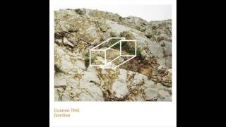 Cosmin TRG - To Touch Is To Divert