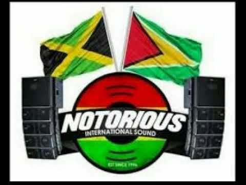 NOTORIOUS INTL SOUND @ FATHER CHRIS BIRTHNIGHT IN ST.KITTS DJ MAGNUM X TOP STRIKER