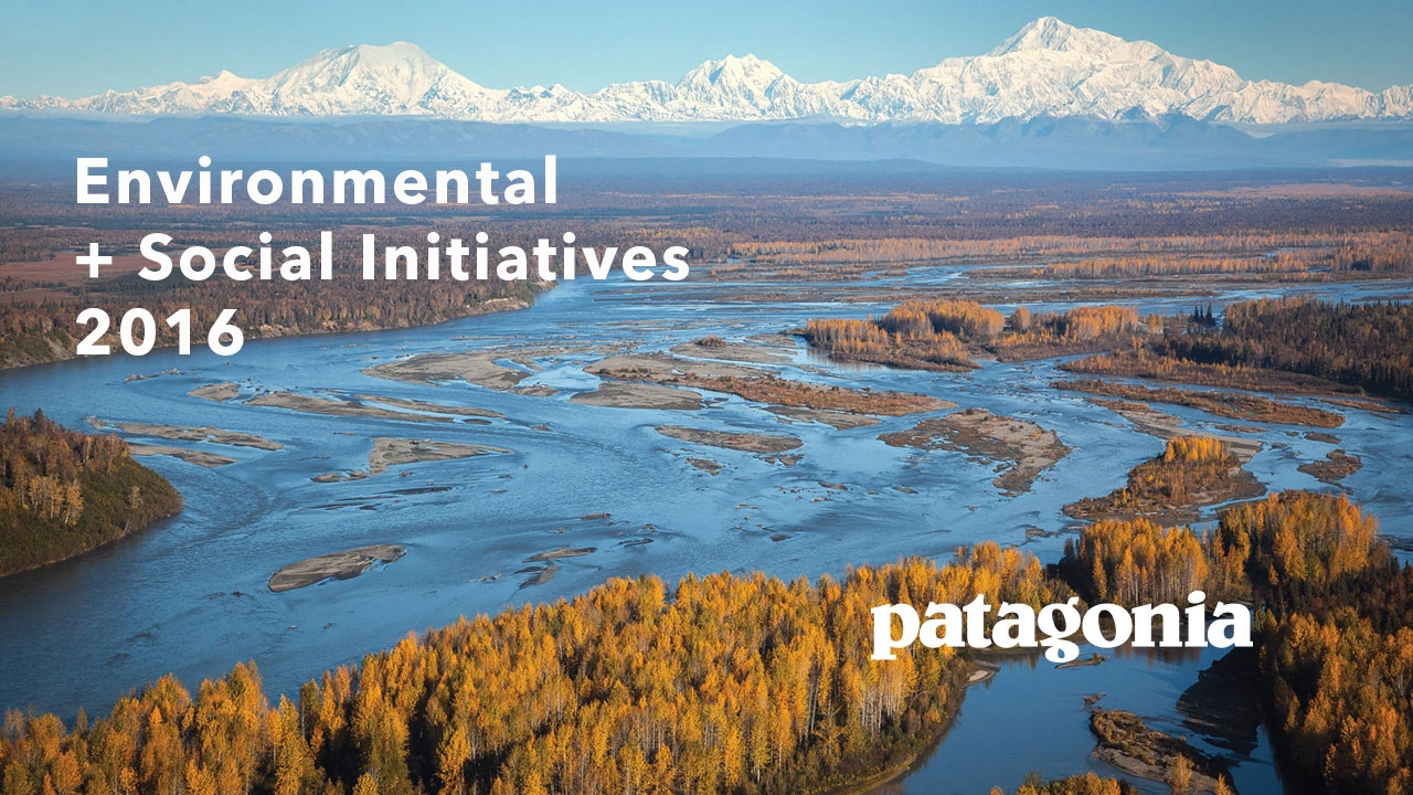 Patagonia's Environmental and Social Initiatives Booklet (2016)
