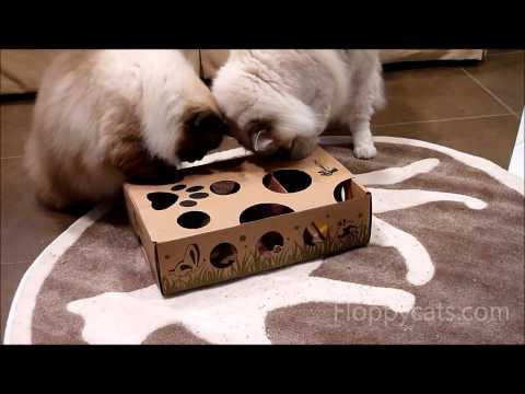 Cat Toys Puzzle Rug