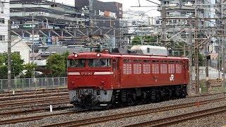 2019/08/22 【単機回送】 EF81-141 大宮操車場   JR East: EF81-141 at Omiya Yard